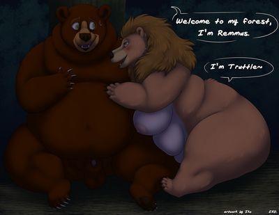 Beware Be proper of Bear