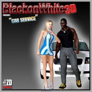 BlacknWhite3D- Car Service