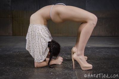 He has her in an asymmetrical bind, her limbs pulled to the side and her cum-hole e