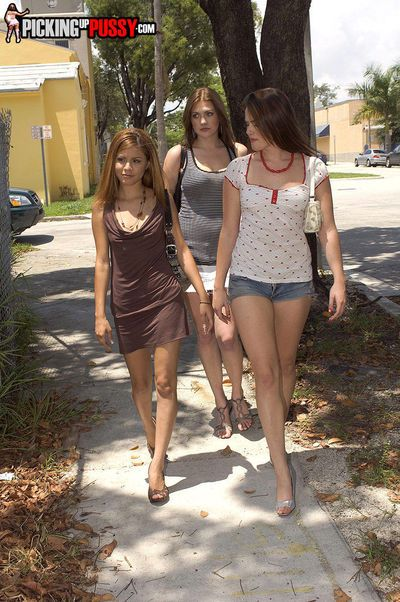 3 girls out for a walk get picked up for amateur group sex fucking
