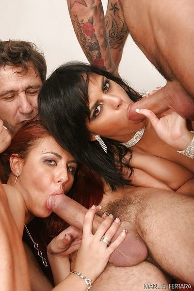 Pornstars Crystal Crown and Angelina Black sucking group of big cocks